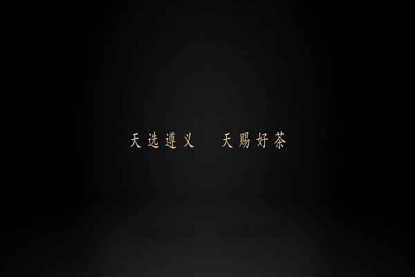 遵义茶叶品牌专题片