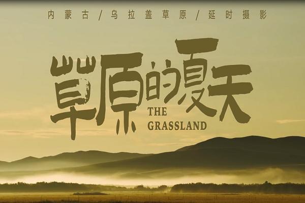 文化专题片《草原的夏天》